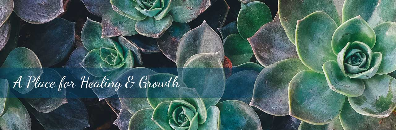 A place for healing and growth banner. Wellview Counseling in Roswell, GA 30076